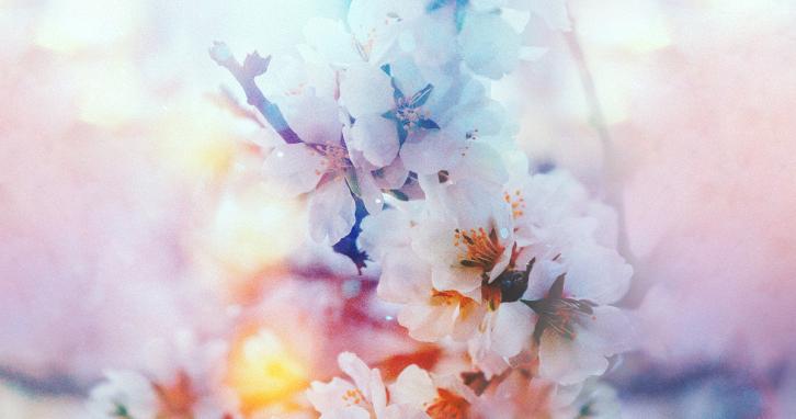 10 весняних хітів для грайливого настрою
