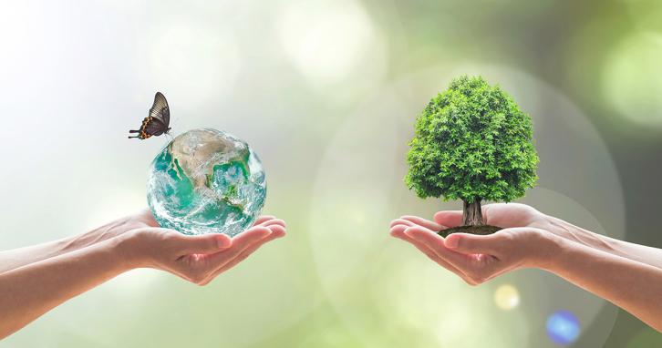 Сортуємо сміття та влаштовуємо цифрове прибирання