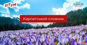Карпатський словник